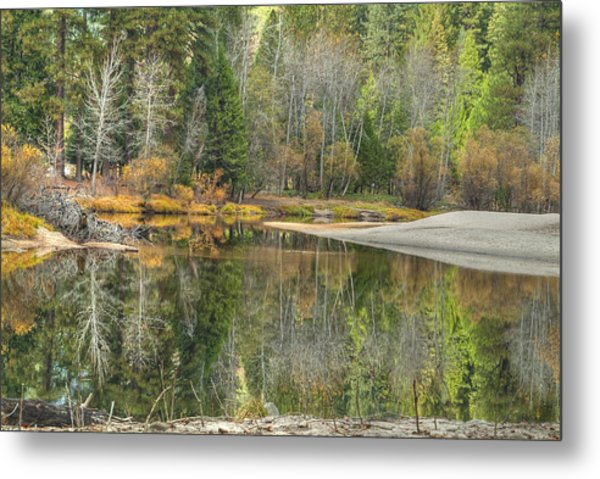Forest Reflection-merced River Metal Print by Ron Schwager