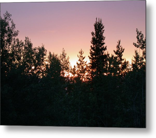 Forest Sunset Silhouette Metal Print