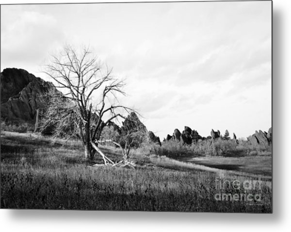 Fountain Valley In Black And White Metal Print