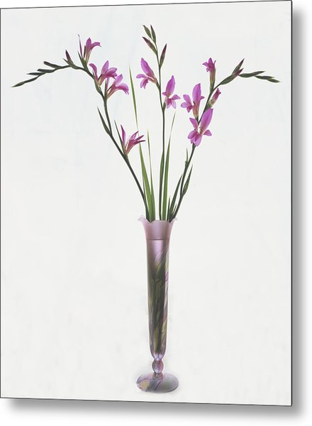 Freesias In Vase Metal Print