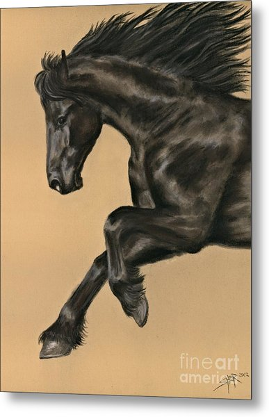 Friesian Portrait Metal Print