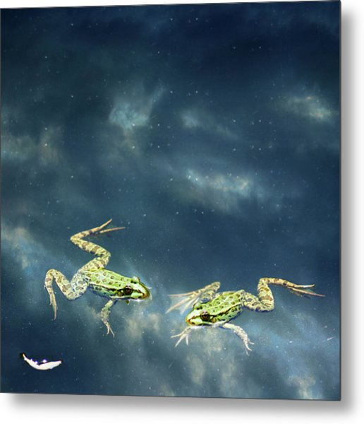 Frogs Metal Print