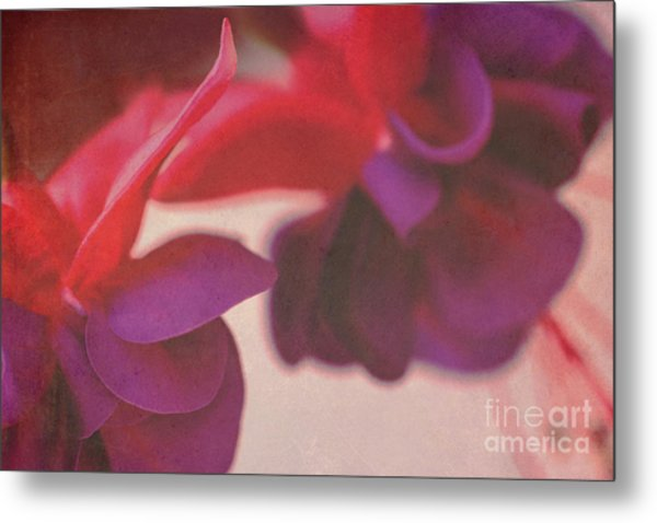 Fuchsia Metal Print by Angela Bruno