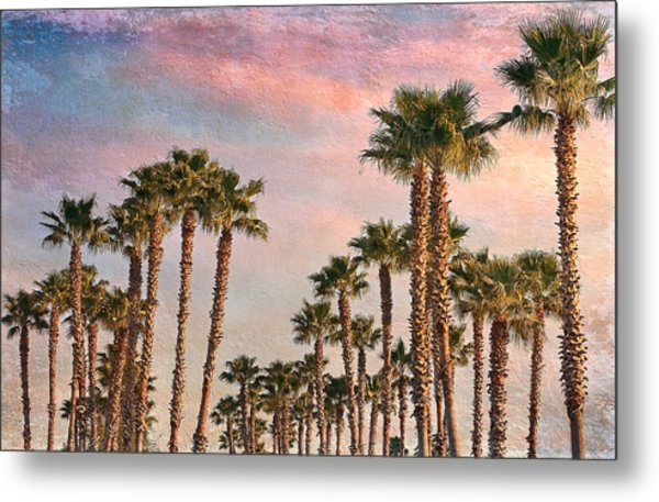 Garden Of Palms Metal Print by Stephen Warren