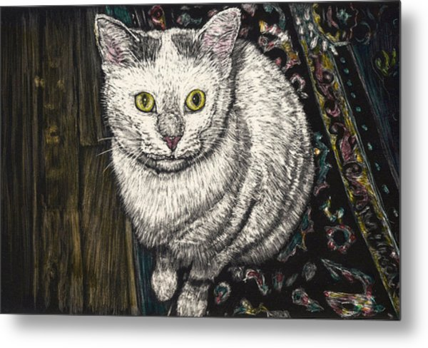 Georgie The Cat Metal Print by Robert Goudreau