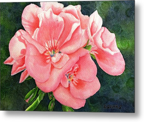 Geraniums Metal Print by Debra Spinks