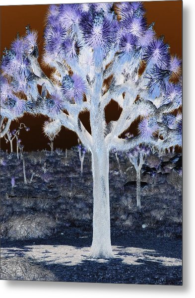 Ghostly Joshua Tree Metal Print by Claire Plowman