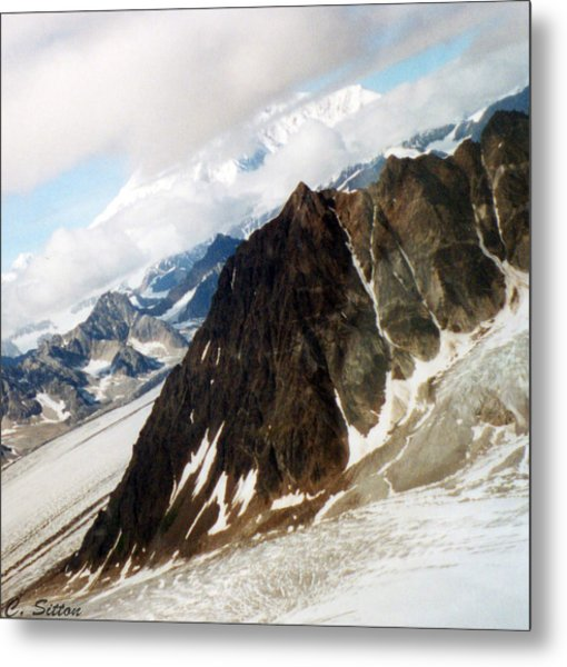 Glacier Flight 2 Metal Print
