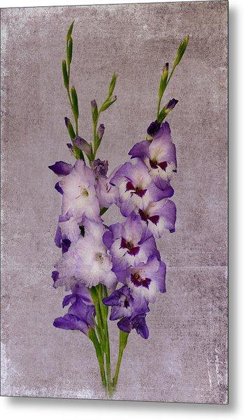 Gladiolus Metal Print