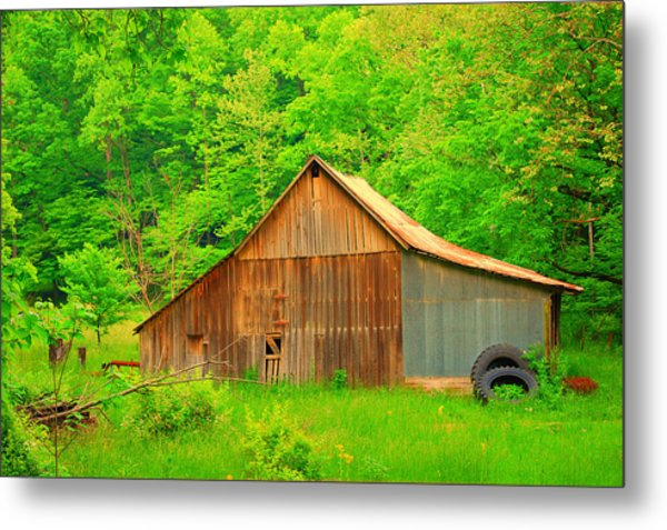 Going Green Metal Print by Robin Pross