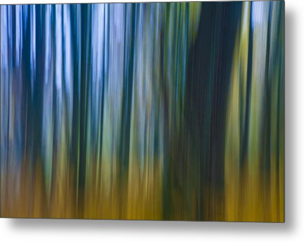 Golden Blue Metal Print