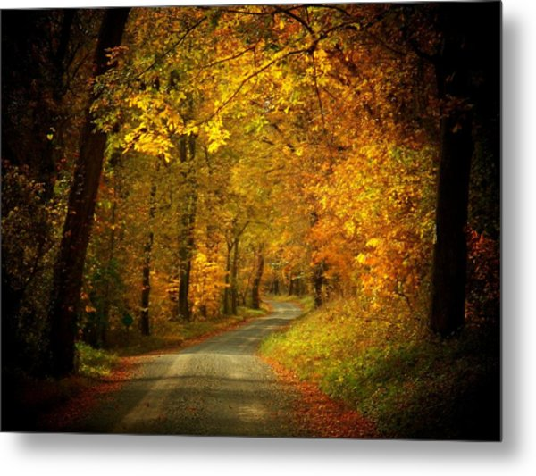 Golden Road Metal Print by Joyce Kimble Smith