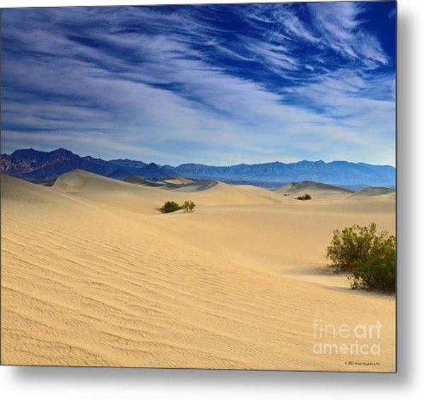 Golden Sand Dunes Death Valley National Park Metal Print