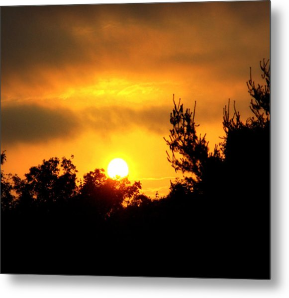 Good Night Mr. Sun Metal Print