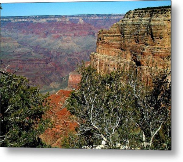 Grand Canyon Aa Metal Print by Dottie Gillespie