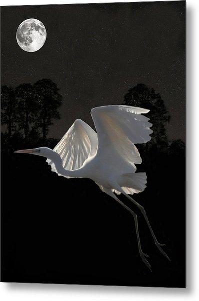 Great Egret In Flight Metal Print