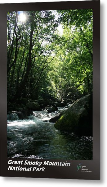 Great Smoky Mountains Np 008 Metal Print by Charles Fox