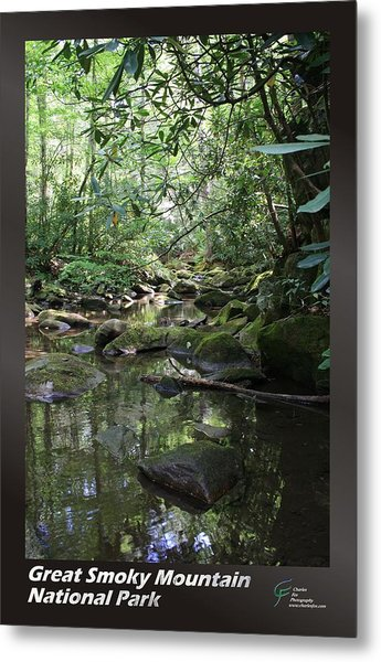 Great Smoky Mountains Np 012 Metal Print by Charles Fox