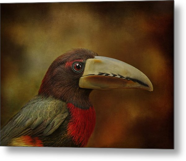 Green Acari Metal Print