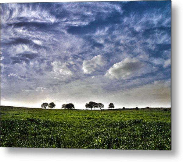 Green Fields And Blue Sky Metal Print