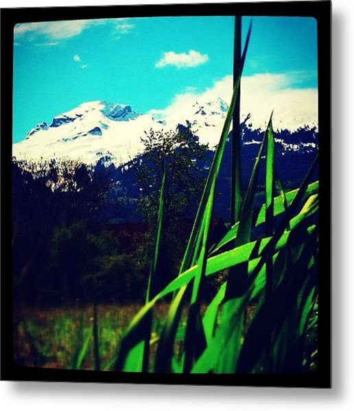 Green With A View Metal Print