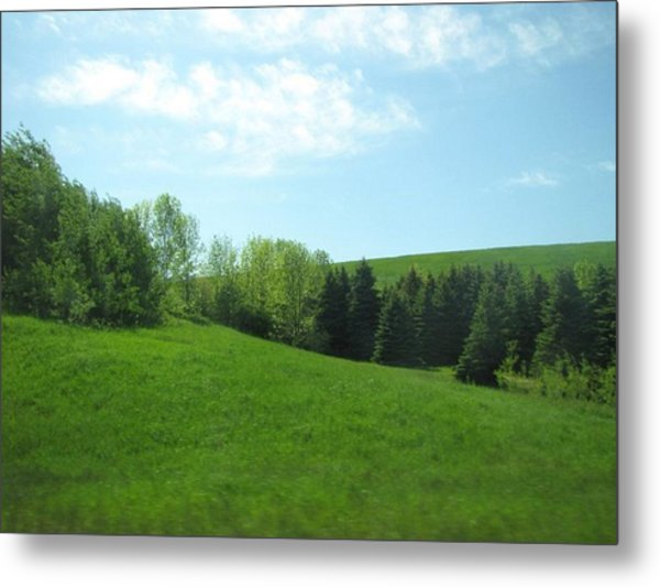 Greener Pastures Metal Print by Harry Wojahn