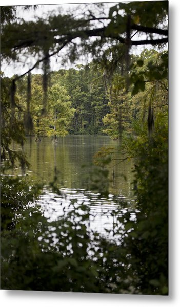 Greenfield Lake Metal Print by Christina Durity