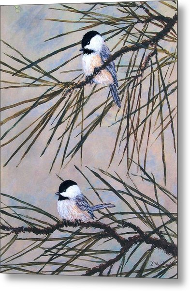 Grey Pine Chickadees Metal Print