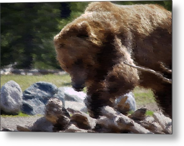Grizz Dinner Metal Print by Kevin Bone