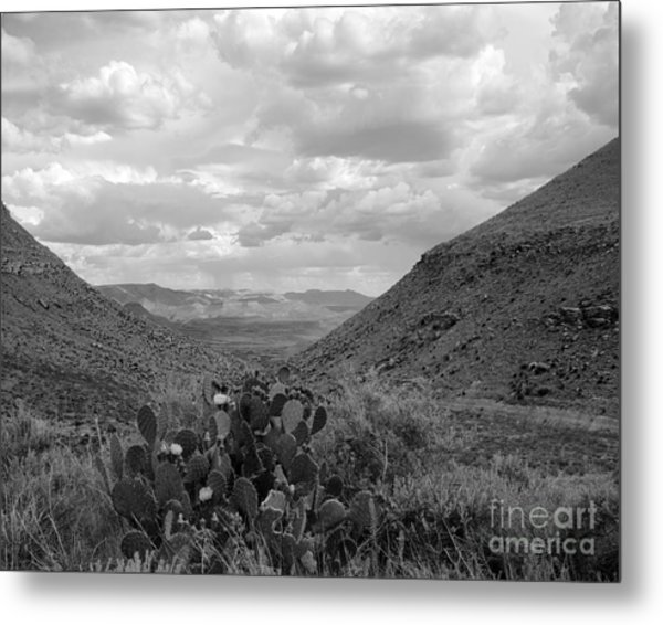 Guadalupe Mountain View Metal Print