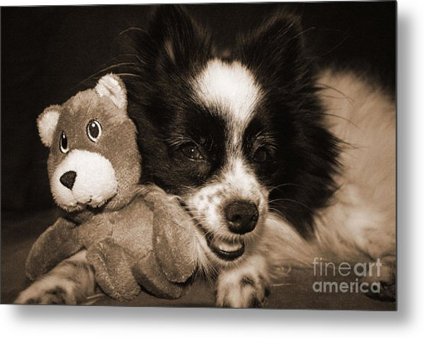 Gypsy With Billy Beaver Metal Print