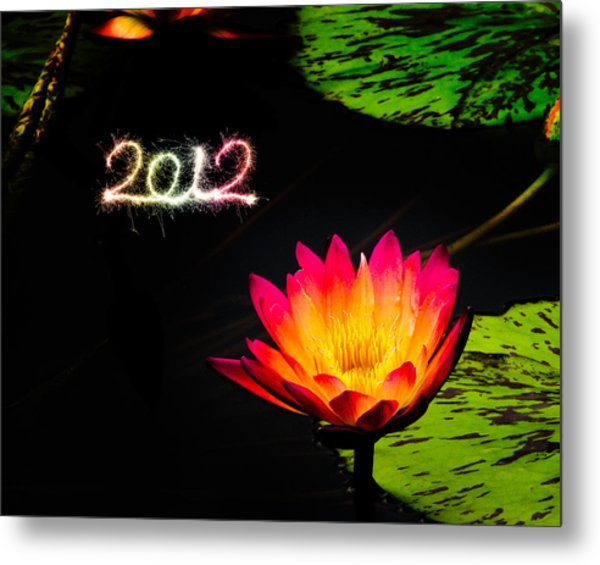 Metal Print featuring the photograph Happy New Year 2012 by Michael Taggart