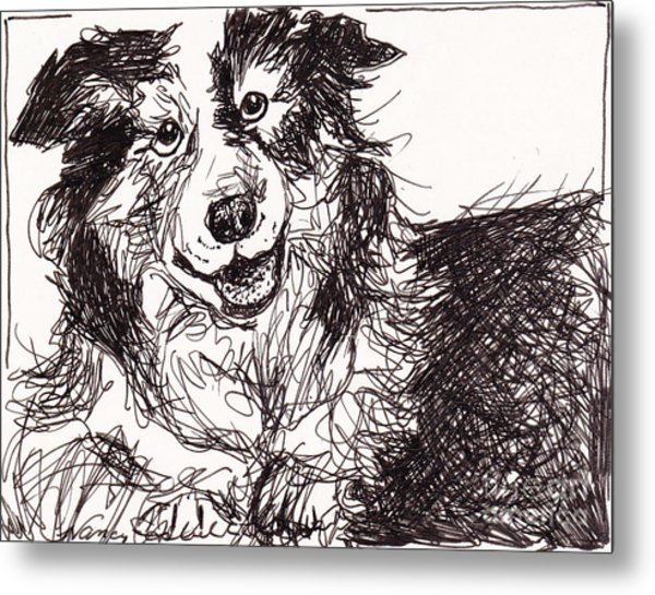 Happy The Boarder Collie Metal Print by Michele Hollister - for Nancy Asbell