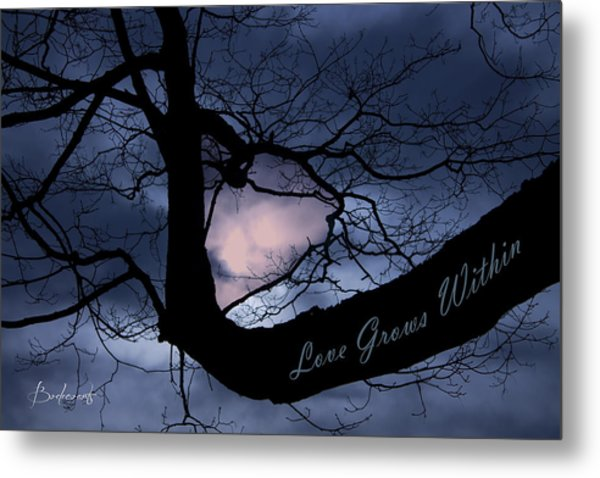 Heart In Tree Love Grows Within  Metal Print