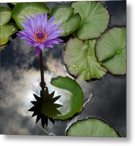 Heaven And Earth Reflections Metal Print