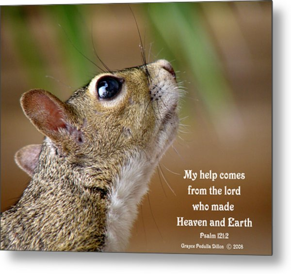 Metal Print featuring the photograph Help Comes From The Lord by Grace Dillon