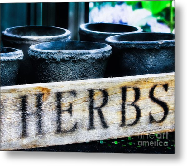 Herb Pots Metal Print by Colleen Kammerer
