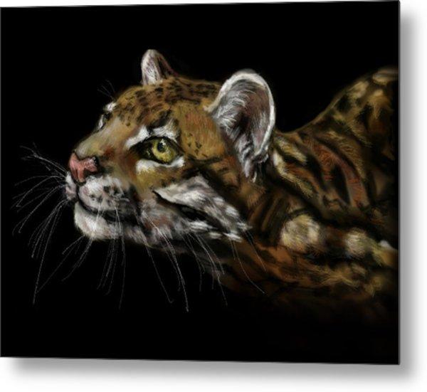 Here Kitty Kitty Metal Print by Lakota Phillips