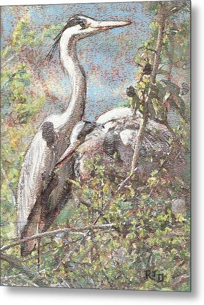 Herons Resting Metal Print