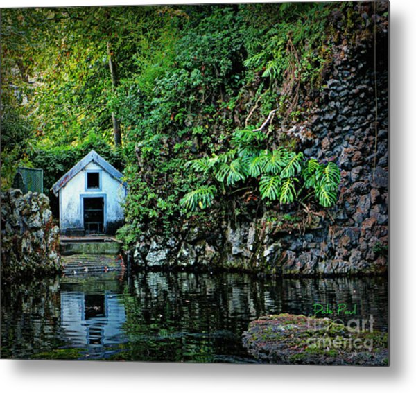 Hide A Way Metal Print