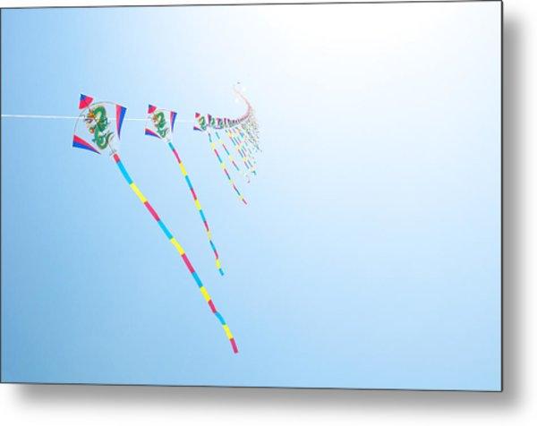 High Flying Kites Metal Print by Flash Parker