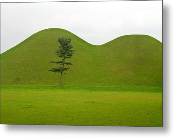 Hill Tombs And Tree Korea Metal Print by Gabor Pozsgai