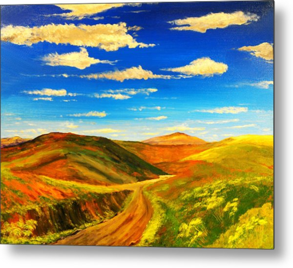 Hill View Valley Metal Print by Nelson