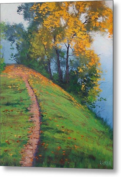 Hillside Trail Metal Print
