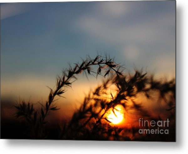 Hold On To The Sun Metal Print by Erica Hanel