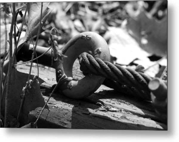 Holding On Metal Print by Loretta Justice