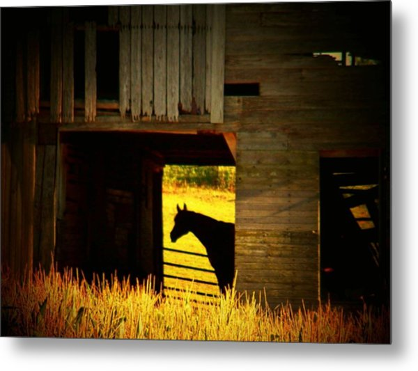 Horse In The Barn Metal Print by Joyce Kimble Smith