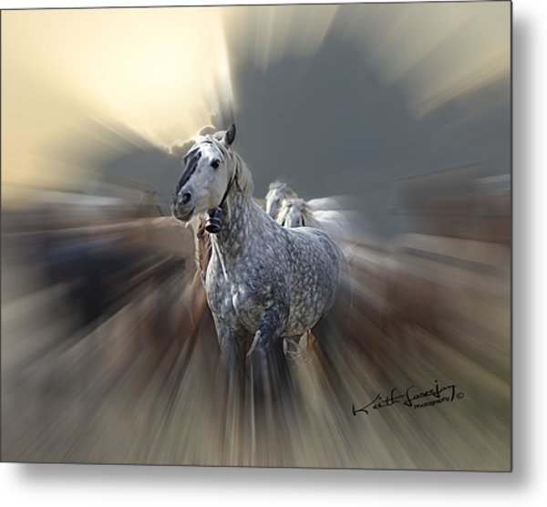 Horse Of A Different Color Zoomed Metal Print