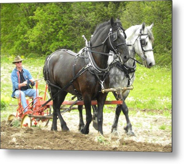 Horse Power 2 Metal Print