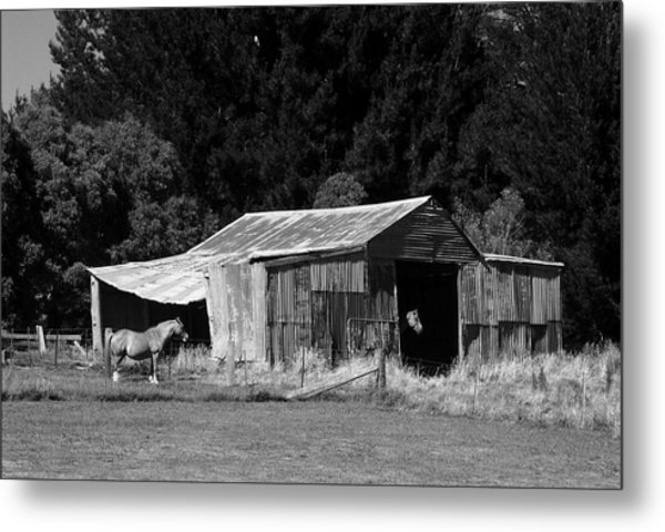 Horses And Old Barn Metal Print